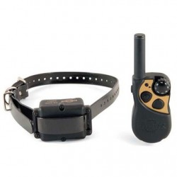 Yard and Park Static Remote Trainer